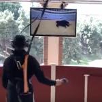 juego de torero virtual