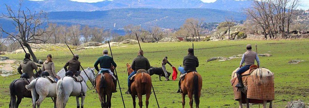 visitas a ganaderías
